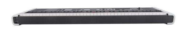 DEXIBELL VIVO P3 - Portable Piano/Keyboard